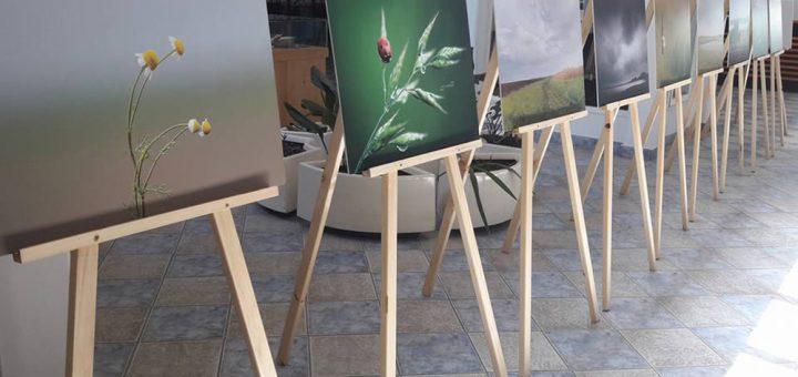 Izložba fotografija nastalih tokom Foto-safarija na Slanom Kopovu